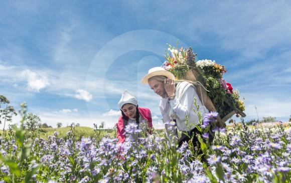 ¿Cómo será la Feria de las Flores con la pandemia?
