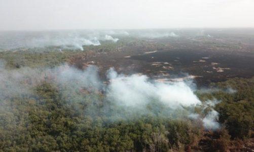 Isla Salamanca arde entre una tormenta perfecta