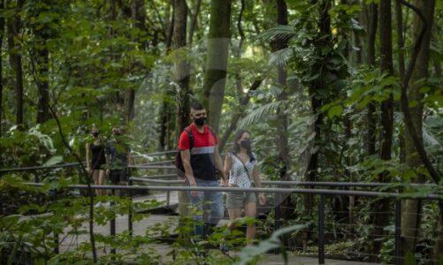 ¿Cómo va el turismo en Medellín y el Área Metropolitana?